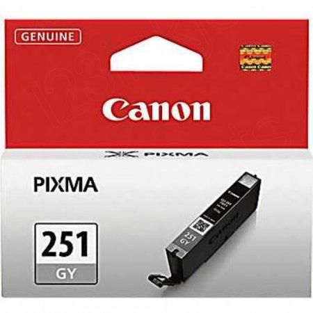 Canon 6517B001 (CLI-251) Ink Cartridge, SY Gray, OEM
