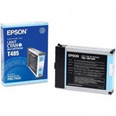 Epson T485011 110ml Ink Cartridge, Light Cyan, OEM